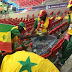 World Cup: See What Senegal Fans Did After Their Epic Victory Against Poland (Photos)