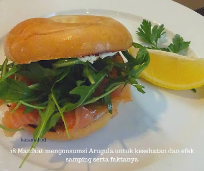 Fakta mengenai arugula dan efek samping arugula