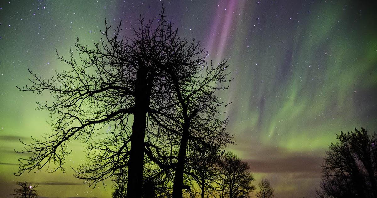 Jim Cox Photos Northern Lights Elk Island Park Oct 10