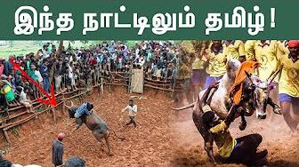 Pala Nootraandukalaaka Tamil Panpaattai..