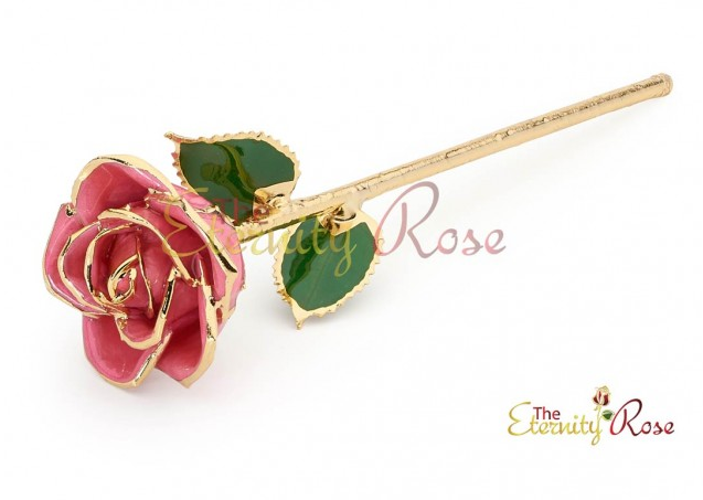 Anniversary Gift Ideas from The Eternity Rose