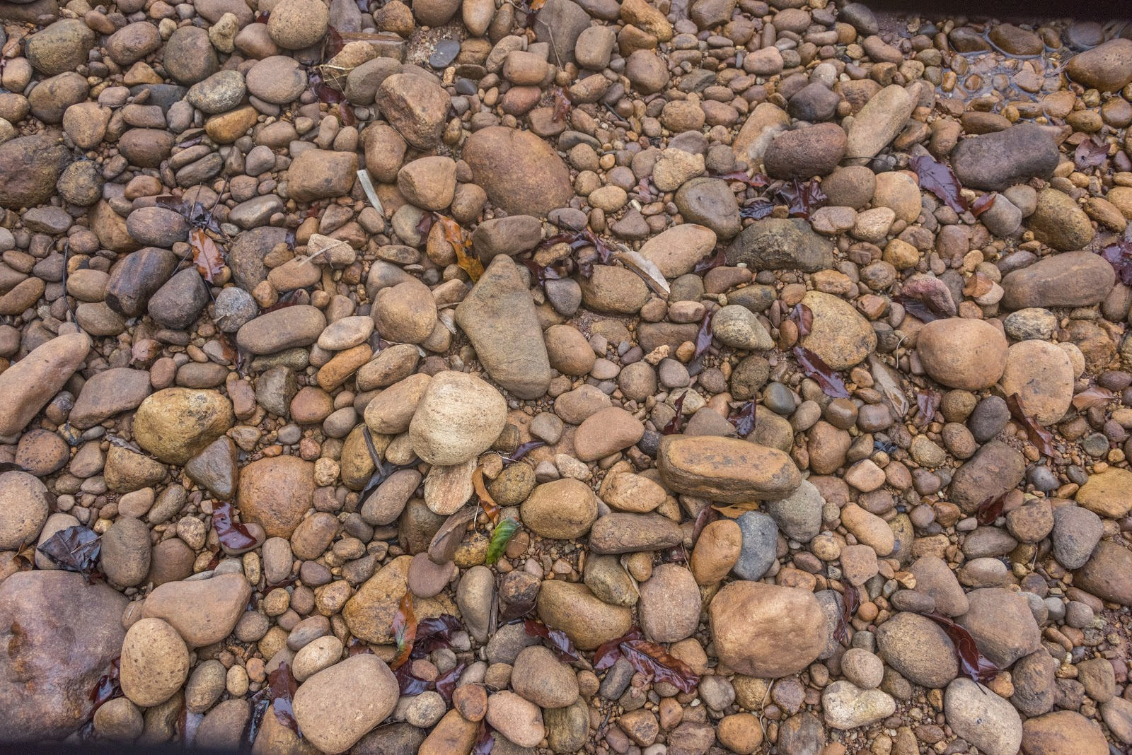Pebbles in Kallar river