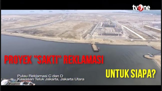 Pakar: Teluk Jakarta Hanya Butuh Restorasi Tidak Butuh Reklamasi