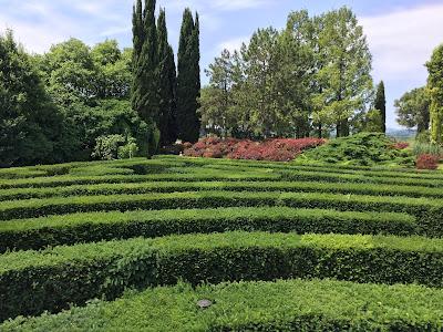 Labyrinth of Parco Gardino Sigurtà.