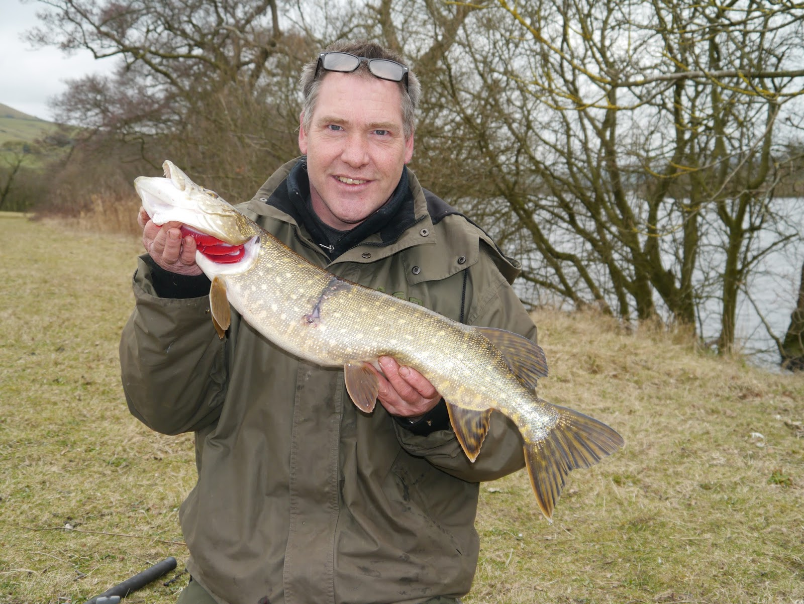 Pike fishing uk march madness for Pictures of pike fish