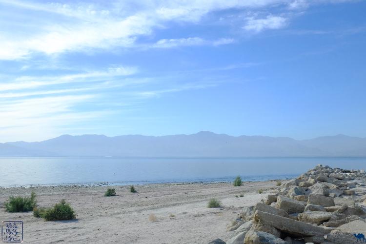Le Chameau Bleu  - Voyage en Californie du Sud à Salton Sea USA
