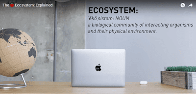 The Apple Brand Ecosystem Explained