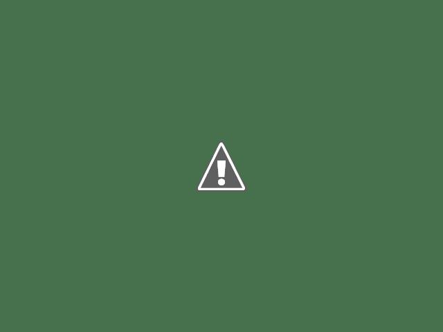 Pochampalli sarees