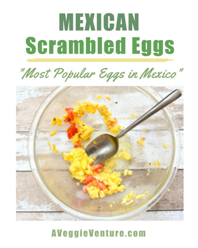 Mexican Scrambled Eggs (Huevos Revueltos a la Mexicana), another healthy summer breakfast ♥ A Veggie Venture and the most popular eggs in Mexico according to Diana Kennedy. Simple & Seasonal. Low Carb. High Protein. Very Weight Watchers Friendly. Gluten Free. Whole30 Friendly.