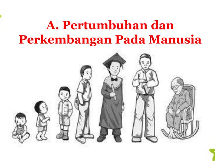 Pendidikan SD: Soal Ulangan Harian dan Kunci Jawaban IPA ...