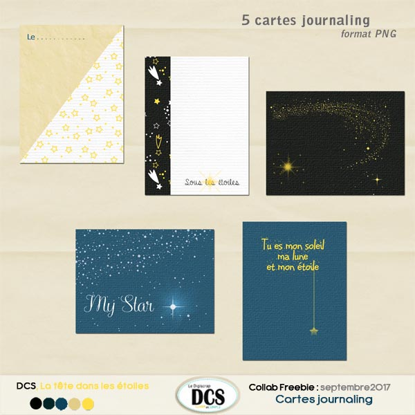 DCS ,la  t?te dans les ?toiles  : journaling cards