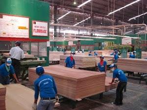 Lowongan Kerja Pabrik Plywood Malaysia Pria dan Wanita