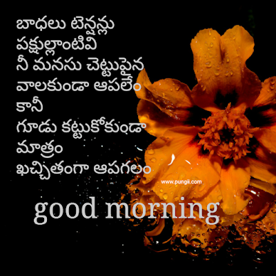 good morning quotes in telugu and subhodayam images free down load