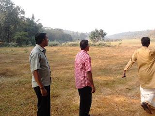 Paddy field at Punchapadam line