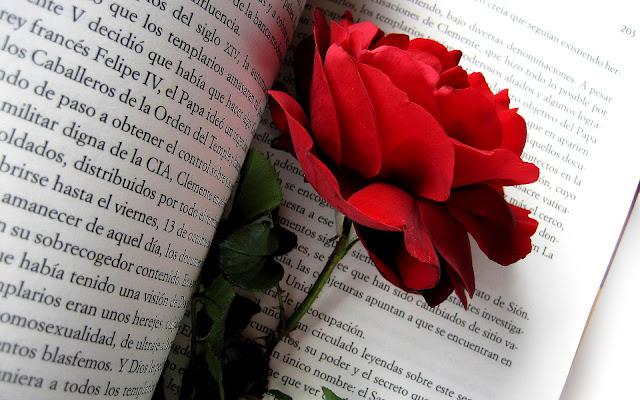 Een rode roos tussen een boek