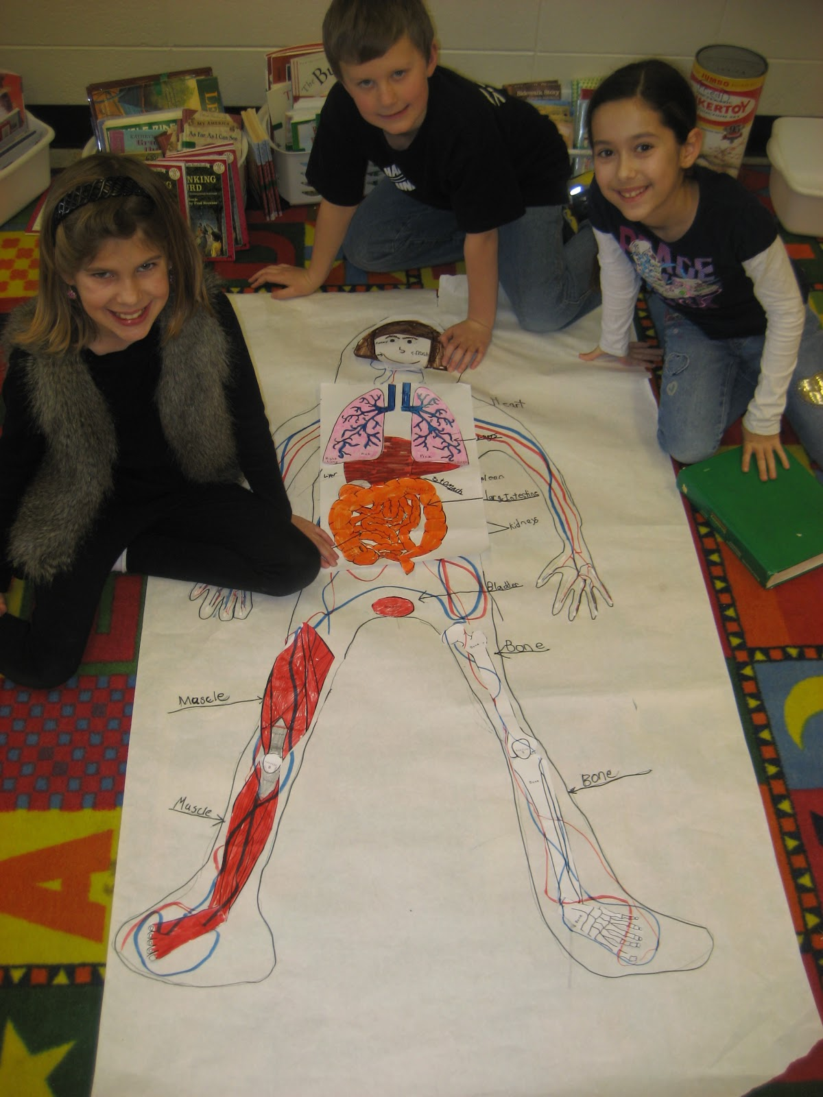 Learning Adventures In The Big Third Grade Human Body
