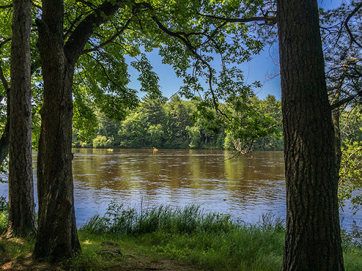 Along the Wisconsin River on The Green Circle Bike Trail in Stevens Point Wisconsin