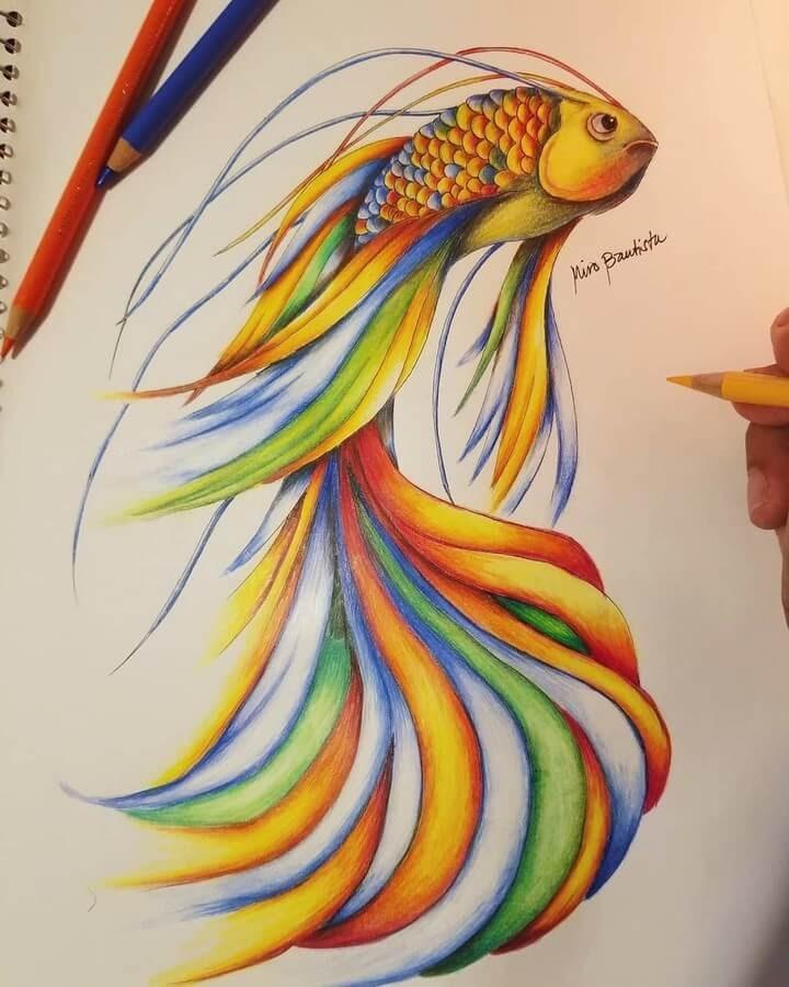 09-Rainbow-Fish-Miro-Bautista-www-designstack-co