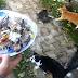 'Berkat Bela Kucing, Saya Selalu Dimurahkan Rezeki'