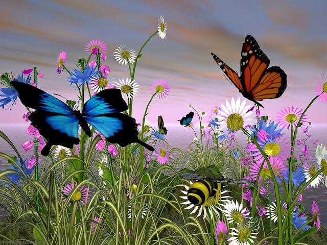 Butterfly Conservatory Goa