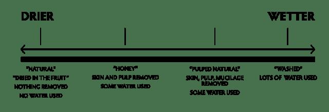 Apa hubungan antara proses kopi honey dan pengupasan pulp natural 3 manfaat lingkungan dari proses honey dan pengupasan pulp natural ccuart Gallery