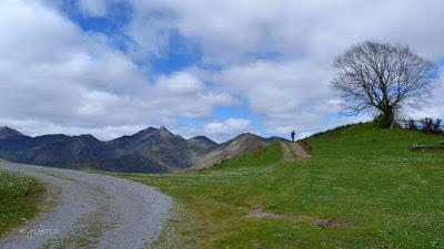 Collada Praduela con Cerro Niañu al fondo - Asturias