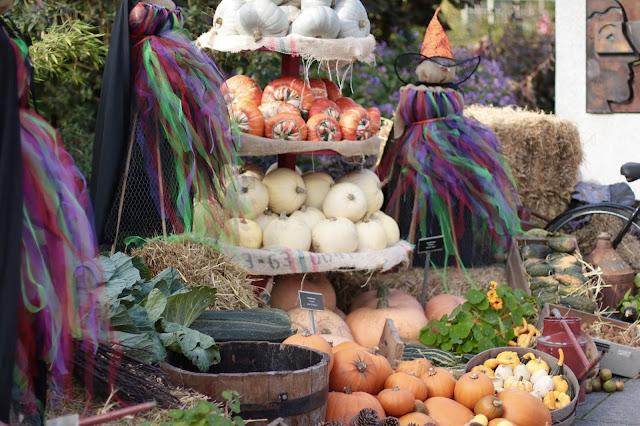 Halloween - Wystawa Dyń oraz co myślę na temat Halloween !!!