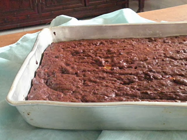 Chocolate fudge slice recipe @ http://treatntrick.blogspot.com