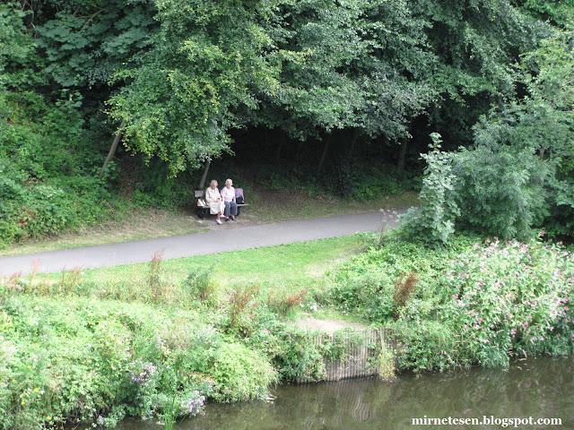 Дарем - парк у реки Уир