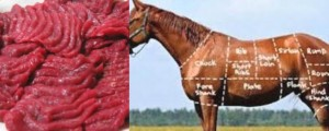 Health Benefits of Horse Meat
