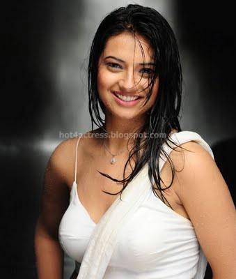 Isha chawla hot l photos in saree