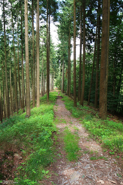 Stadtlandeltern - Wanderung - Traumpfad - Förstersteig