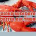 Cara Budidaya Lobster Air Tawar Rumahan
