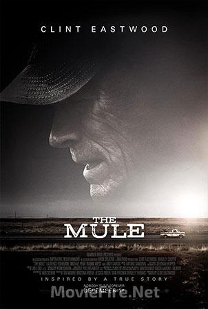 The Mule (2018) 1080p