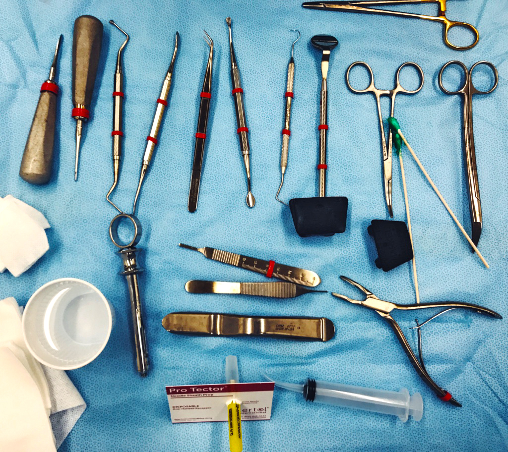 a day in the life of a dental student