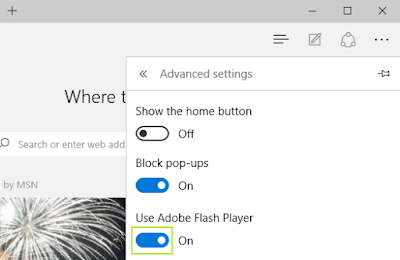 tampilan View Advanced settings pada Microsoft Edge