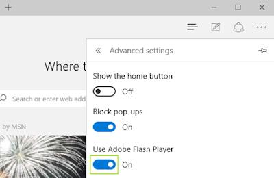 tampilan View Advanced settings pada Microsoft Edge