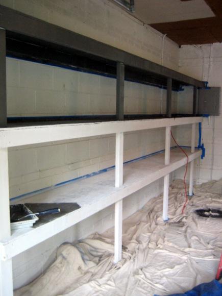 painting garage shelves