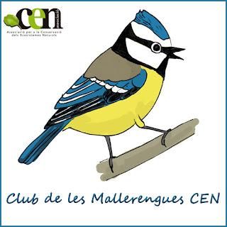 http://www.enricpamies.com/p/club-de-les-mallerengues-cen.html