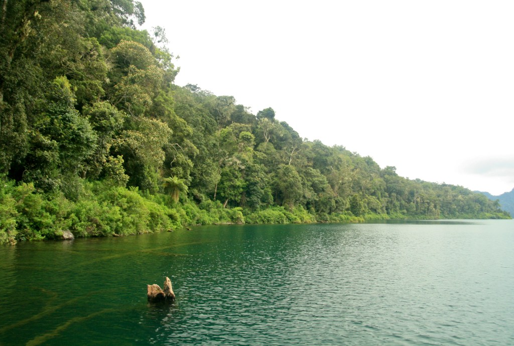 Asian Lake 38