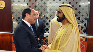 الإمارات ومصر يناقشان استراتيجيات مشتركة لوقف تزويد الإرهابيين بالأسلحة