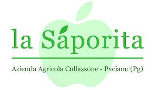 http://www.la-saporita.it/