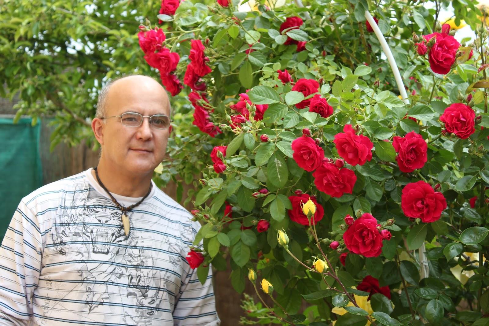 Imagenes De Jardines Con Flores: ARTE Y JARDINERÍA : Flores Y Plantas De Arte Y Jardinería