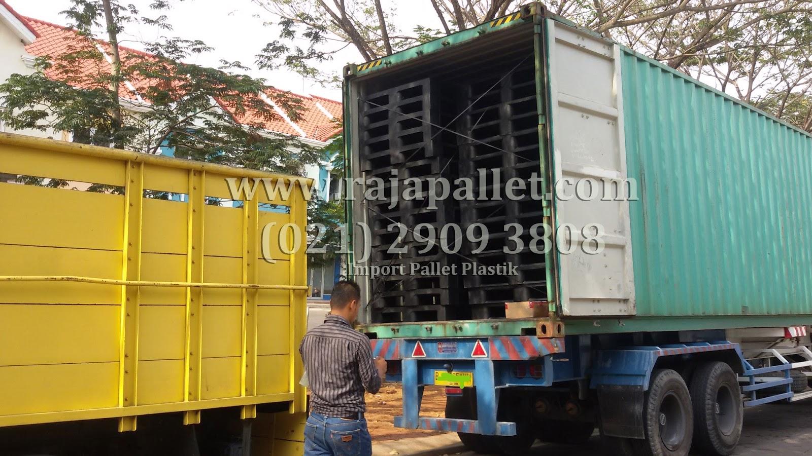 pallet plastik import