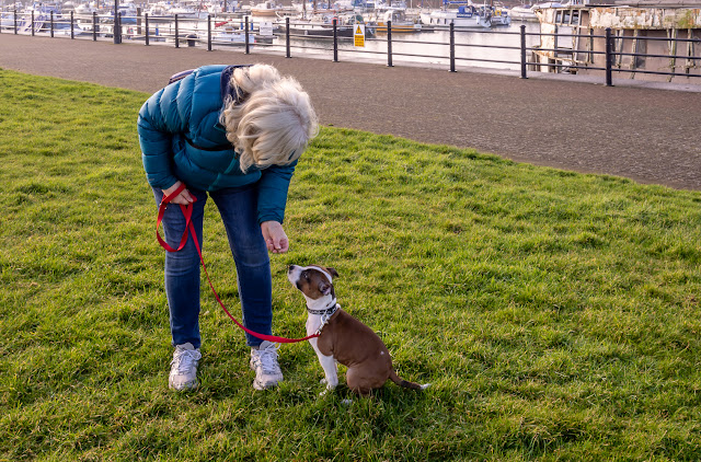 Photo of me with Ruby on a grassy area by the marina