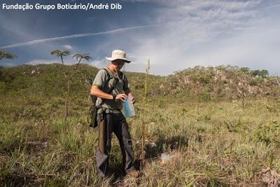 Reserva Natural Serra do Tombador, RPPN Serra do Tombador, Fundação Grupo Boticário de Proteção à Natureza, goiás, natureza, unidade de conservação, meio ambiente, uc, conservação da natureza, preservação ambiental, expedição, ciência, pesquisa