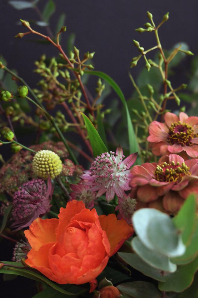 minza will sommer herbstblumen im oktoberregen. Black Bedroom Furniture Sets. Home Design Ideas