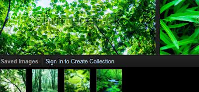 Shutterstock Spectrum, imágenes escogidas en una colección