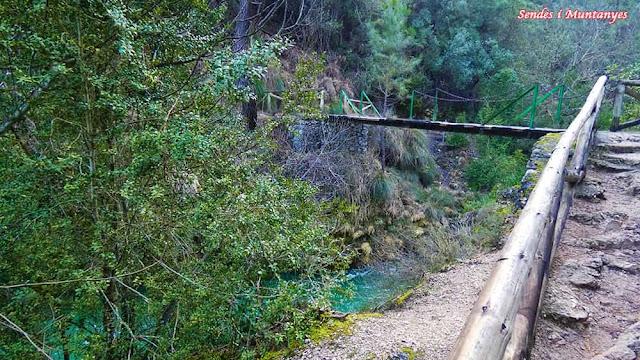 Puente en cerrada Elías, río Borosa, Pontones, Sierra de Cazorla, Jaén, Andalucía