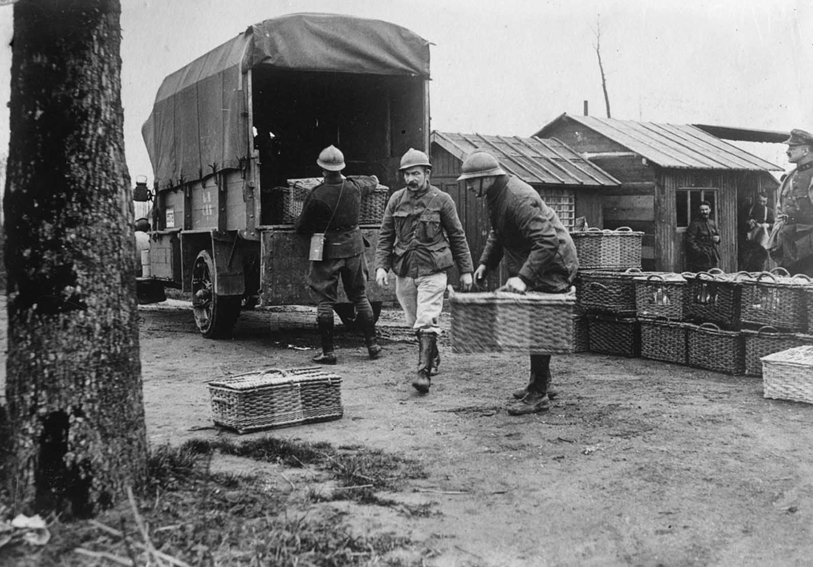 Belgian Army pigeons. Homing pigeon stations were set up behind the front lines, the pigeons themselves sent forward, to return later with messages tied to their legs.